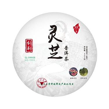 真芝宝2019年 灵芝普洱茶 357g生茶饼茶
